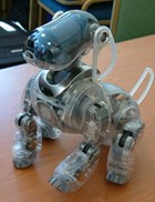Sony's 'Crystal' is an Aibo (Artificial Intelligence RoBOt) prototype.