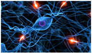 Advances in Alzheimer's Disease