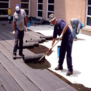 Viridian Systems develops new roofing products