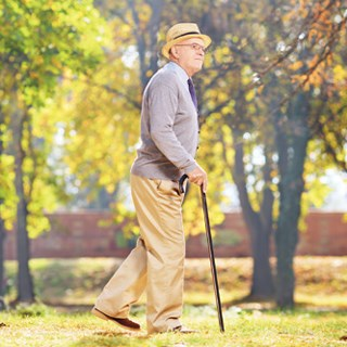 An in-hospital mobility program kept seniors out of the hospital.