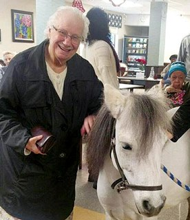 Happy horses, happy residents