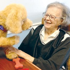 Biscuit, a dog made by Hasbro, was used to help dementia residents at a California facility engage.