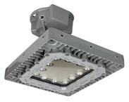 Larson LED Light Fixture