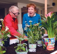 Gardening therapy via provider-vendor partnership