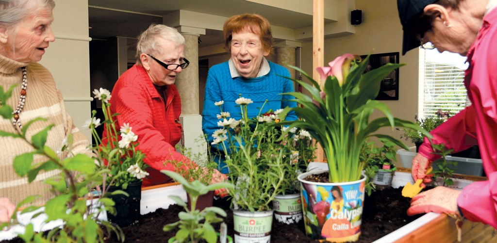 Gardening therapy blooms with provider-vendor pact
