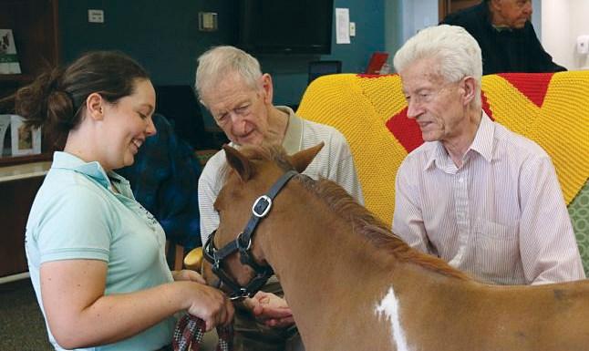 Maverick blazes pet therapy trail