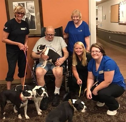 Nurses step in to save resident's dogs from euthanasia